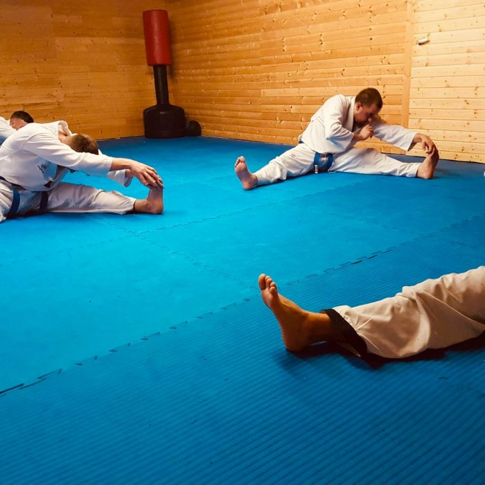 TaeKwonDo und HapKiDo Training Yong Du Tsche Yuk Kwan (2)