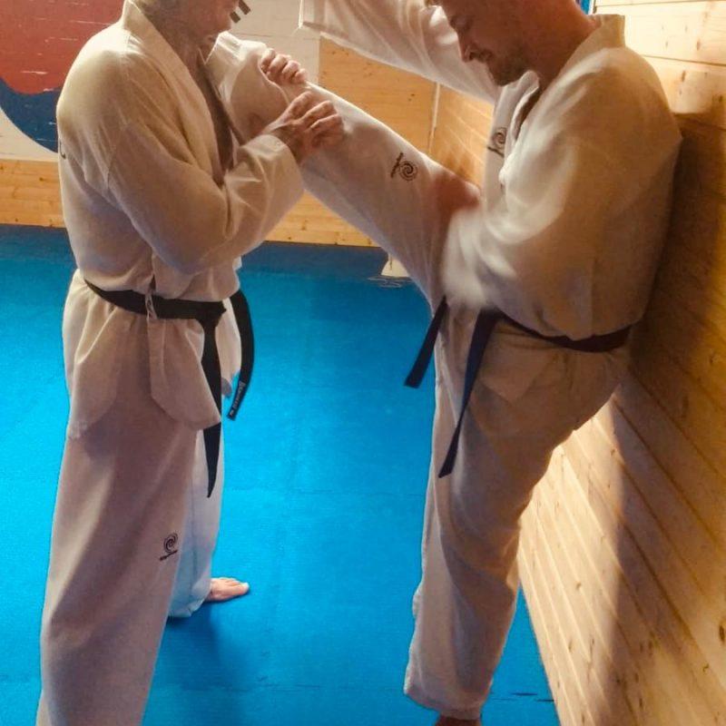 TaeKwonDo und HapKiDo Training Yong Du Tsche Yuk Kwan (9)